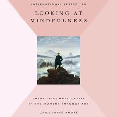 Looking at Mindfulness by Christopher Andr¿, Christophe André