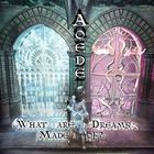 What Are Dreams Made Of? by Lisa Sniderman