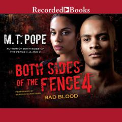 Both Sides of the Fence 4 by M. T. Pope