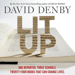 Lit Up by David Denby
