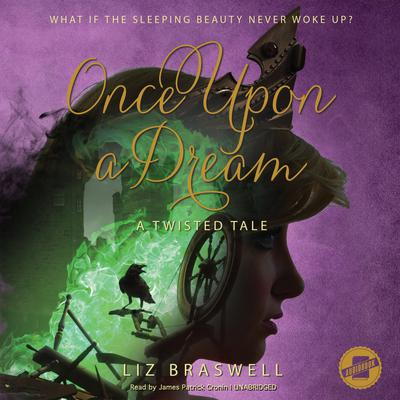 Once Upon a Dream by Liz Braswell, Disney Press