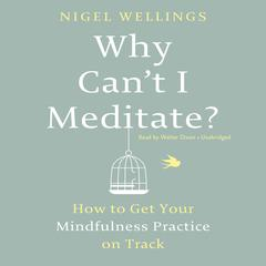 Why Can't I Meditate? by Nigel Wellings