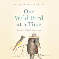 One Wild Bird at a Time by Bernd Heinrich