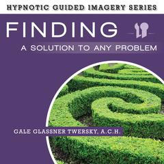 Finding a Solution to Any Problem by Gale Glassner Twersky