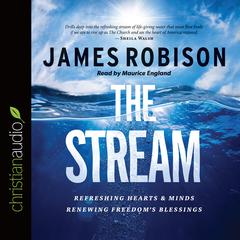 The Stream by James Robison