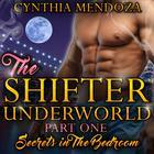 Secrets in the Bedroom by Cynthia Mendoza