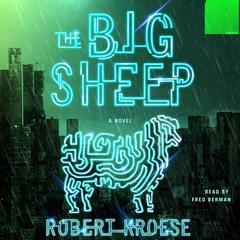 The Big Sheep by Robert Kroese