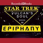 Epiphany by Josepha Sherman, Susan Schwartz