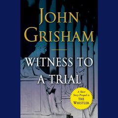 Witness to a Trial by John Grisham