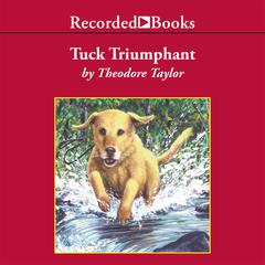 Tuck Triumphant by Theodore Taylor