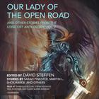 Our Lady of the Open Road, and Other Stories from the Long List Anthology, Vol. 2 by Sarah Pinkster, Martin L. Shoemaker, various authors, David Steffen