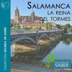 Salamanca by Francisco Javier Lorenzo Pinar