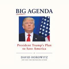 Big Agenda by David Horowitz