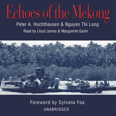 Echoes of the Mekong by Peter A. Huchthausen audiobook
