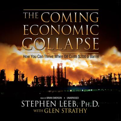 The Coming Economic Collapse by Stephen Leeb audiobook