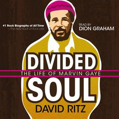 Divided Soul by David Ritz audiobook