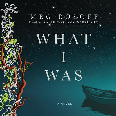 What I Was by Meg Rosoff audiobook