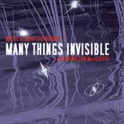 Many Things Invisible by  Carrington MacDuffie audiobook