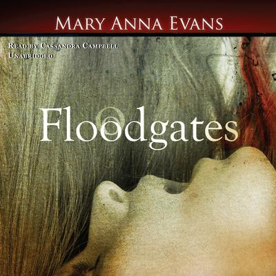 Floodgates by Mary Anna Evans audiobook