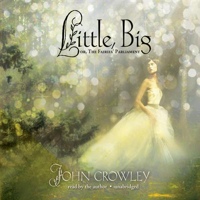 Little, Big by  audiobook