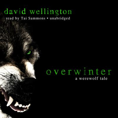Overwinter by David Wellington audiobook