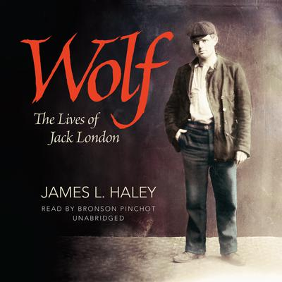 Wolf by James L. Haley audiobook