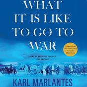 What It Is Like to Go to War by  Karl Marlantes audiobook