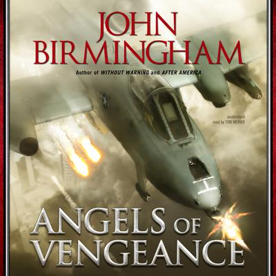 Angels of Vengeance by John Birmingham audiobook