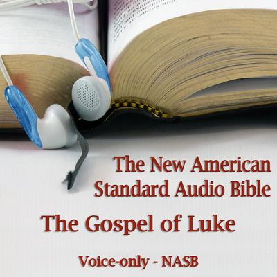 The Gospel of Luke by Made for Success audiobook