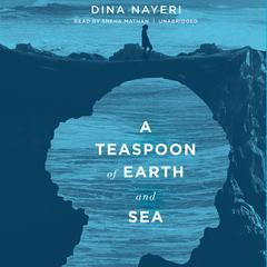 A Teaspoon of Earth and Sea by Dina Nayeri audiobook