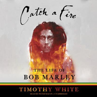 an introduction to the life of bob marley