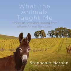 What the Animals Taught Me by Stephanie Marohn audiobook