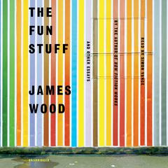 The Fun Stuff by James Wood audiobook