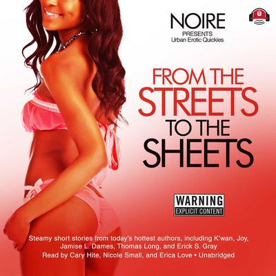 From the Streets to the Sheets by Noire  audiobook