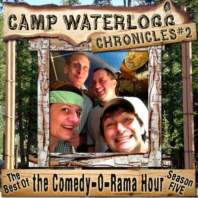 The Camp Waterlogg Chronicles 2 by Joe Bevilacqua audiobook