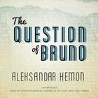 The Question of Bruno by Aleksandar Hemon