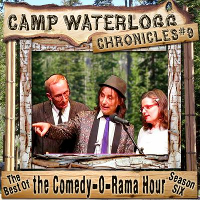 The Camp Waterlogg Chronicles 9 by Joe Bevilacqua audiobook