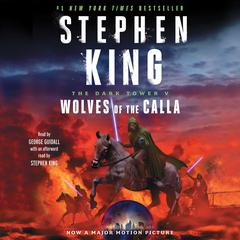The Dark Tower V by Stephen King audiobook