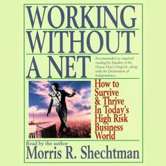 Working without a Net by Morris R. Shechtman audiobook