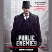 Public Enemies by  Bryan Burrough audiobook
