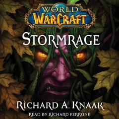 World of Warcraft: Stormrage by Richard A. Knaak audiobook