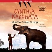 A Million Shades of Gray by  Cynthia Kadohata audiobook