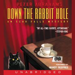 Down the Rabbit Hole by Peter Abrahams audiobook