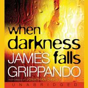 When Darkness Falls by  James Grippando audiobook