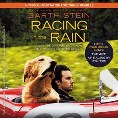 Racing in the Rain by Garth Stein audiobook