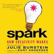 Spark by  Kurt Andersen audiobook