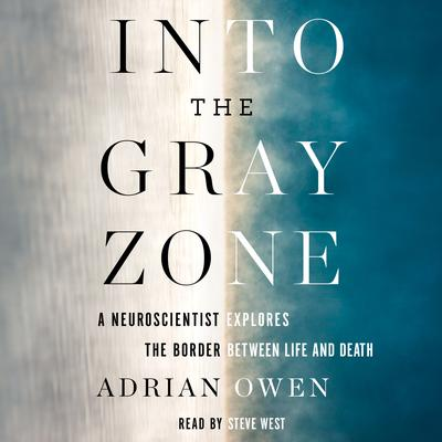 Into the Gray Zone by Adrian Owen audiobook
