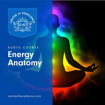 Energy Anatomy by Centre of Excellence audiobook