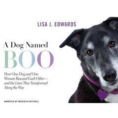 A Dog Named Boo by Lisa Edwards audiobook