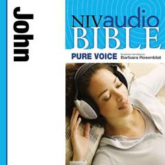 Pure Voice Audio Bible - New International Version, NIV (Narrated by Barbara Rosenblat): (04) John by Zondervan audiobook
